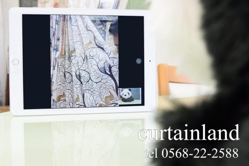 カーテンランドのビデオ通話サービス
